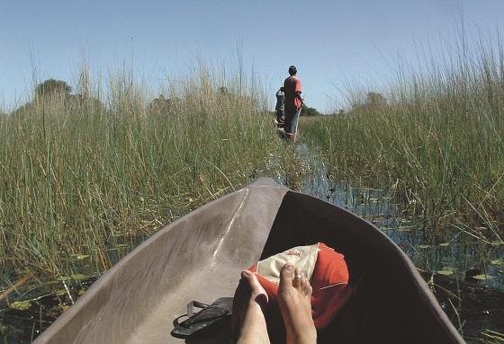 a-relaxing-water-based-safari-in-the-okavango-delta-botswana-1