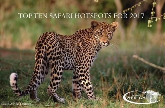 Top Ten Safari Hotspots For 2017