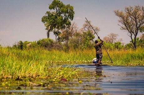 Exploring Botswana's Okavango Delta via dugout canoe.