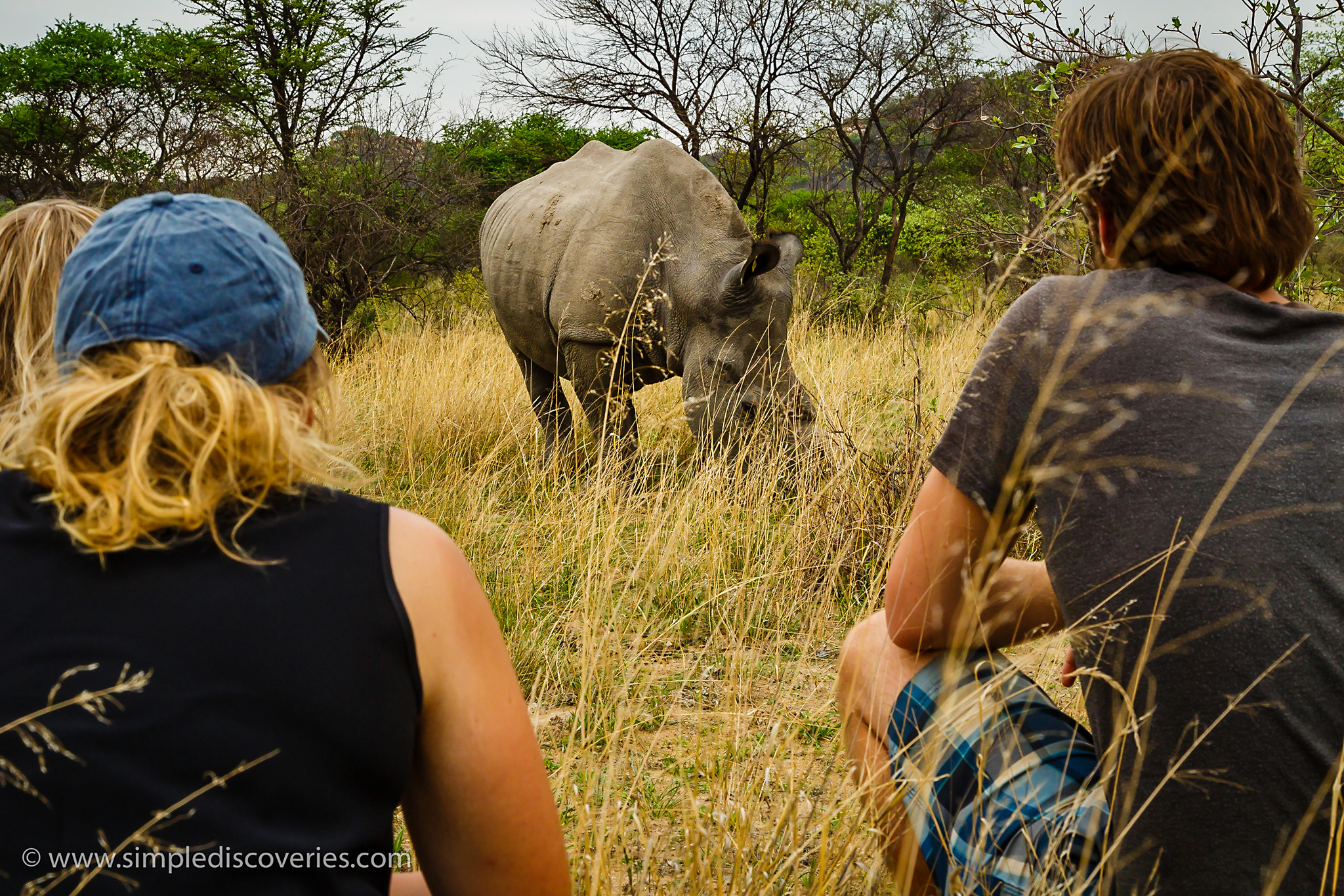 Fighting Extinction: Matopos Rhino Experience