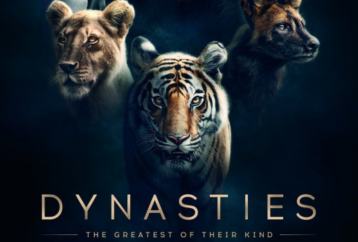 Dynasties - The Greatest of their kind