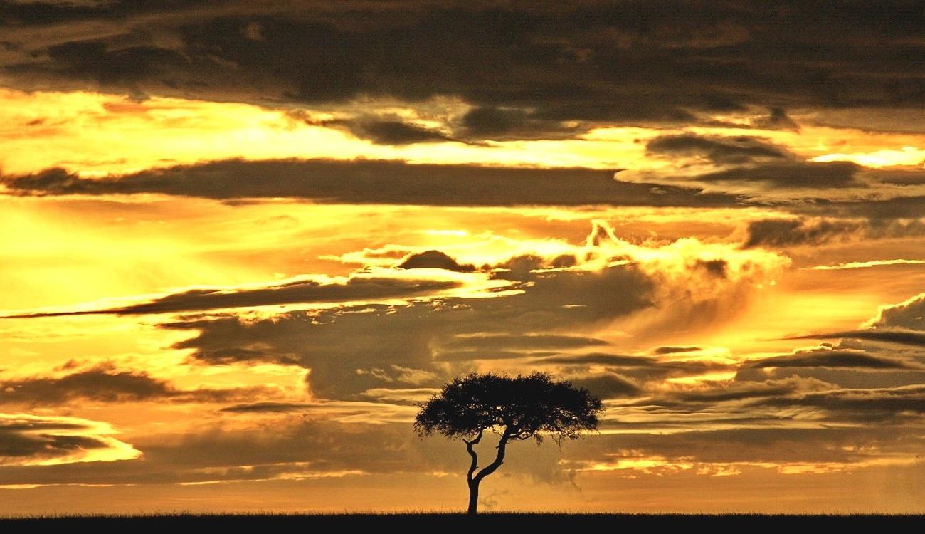 Livingstone To Pretoria Accommodated Adventure Safari